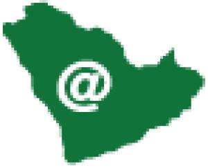 AZKA National Information Technology (Cairo office) Logo