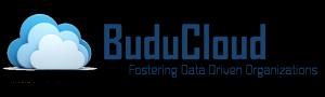 BuduCloud Logo