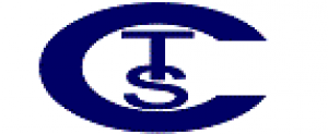 CITY TRADE SERVICE Logo