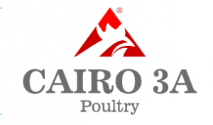 Jobs and Careers at  Cairo Three A  Poultry Egypt
