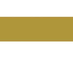 Cleopatra Developments Logo