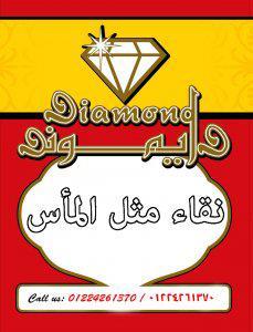 Diamond Food Industries Logo