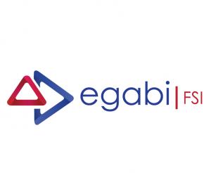 Egabi FSI Logo