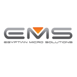 Egyptian Micro Solutions Logo