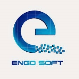 Jobs and Careers at Engosoft Egypt