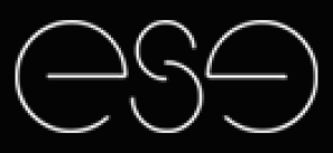 Enterprise Software Engneering Logo