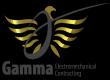 Electrical Site Engineer