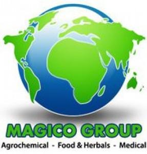 Magico Group Logo