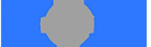 Mest Logo