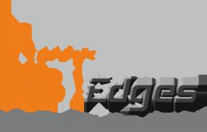 NetEdges Logo