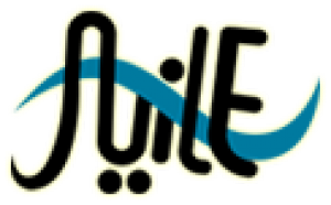 Nile Multimedia Logo