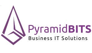 Jobs and Careers at PyramidBITS Egypt