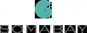 Soma Bay Development Company Logo