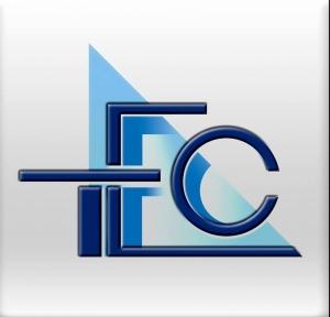 Talent Engineering Company  Logo