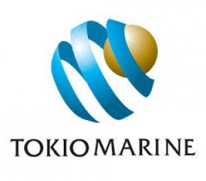 Tokio Marine Egypt Family Logo