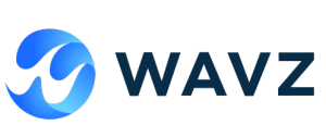 Jobs and Careers at WAVZ for Digital Transformation Egypt
