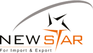 newstaar Logo